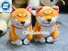 Chó Sabi Nhỏ