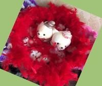 Cặp Gấu Lông Vũ Đỏ
