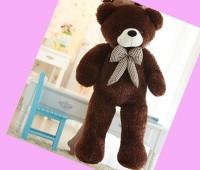 Gấu bông chocolate