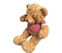 Teddy for you